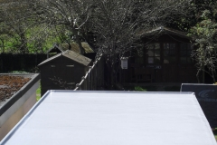roof pic 3